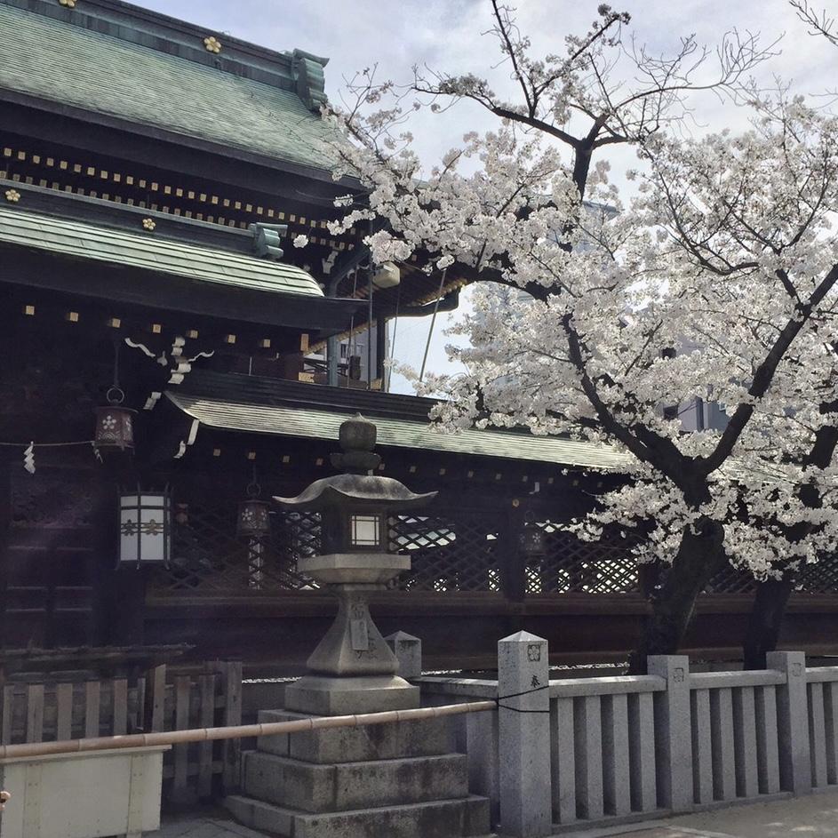 <p>こんにちは。 今日は暖かくてお花見日和ですね🍡 朝ちょっと寄り道して天満宮へ。 桜も綺麗に咲いていました⛩🌸 さて、今日は珈琲セミナーのご案内です❗️ お問い合わせいただいていたお客様お待たせしました。 4月は金曜日のみの開催となります🙇♀️ 4月16日(金)、23 […]</p>